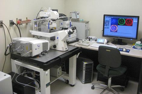 Zeiss LSM 710 Confocal Microsope.